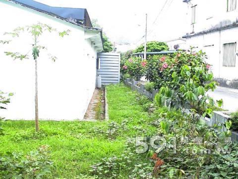 花園及後方空地