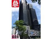 鼎盛BHW朝南超高樓3平面車-吳柔霏