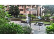 公園庭院空氣清新蟲鳴鳥唱超好住家